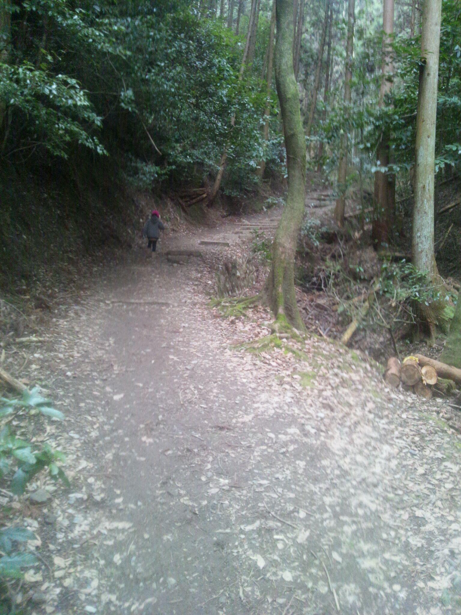 京都散策・新島襄と八重のお墓に行ってきました。